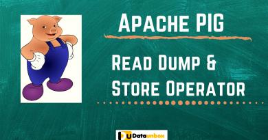 Pig read dump store